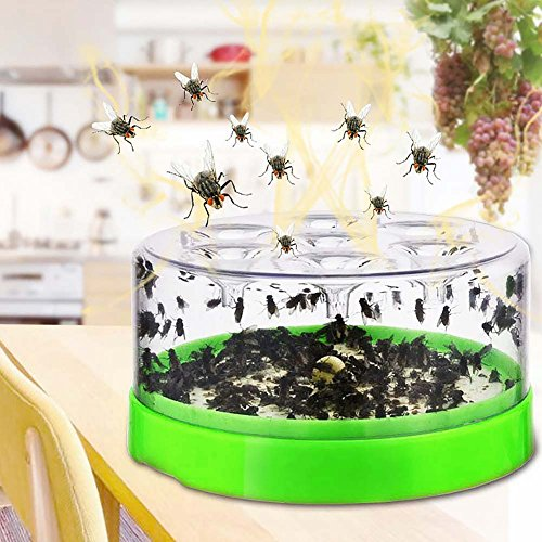 Ragdoll50 Effective Automatic Flytrap Household Flycatcher Pest Catcher Hotel Restaurant Home Kitchen Fly Killer Flies Traps(Green) by Ragdoll50