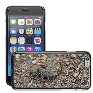 Hot Style Cell Phone PC Hard Case Cover // M00133417 Scorpion Insects Africa Nature // Apple iPhone 6 4.7""