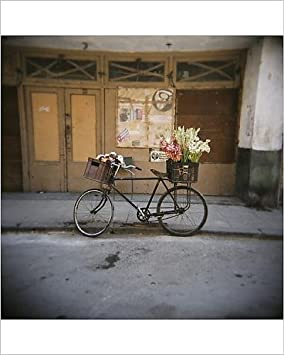 Diseño de bicicleta con flores en cesta, Havana Centro, Havana ...