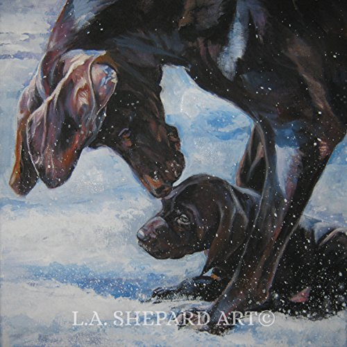 (A German Shorthaired Pointer dog art portrait print of an LA Shepard painting 8x8