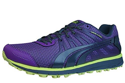 Puma Faas 300 TR Zapatos Entrenadores de Ejecución de las mujeres púrpuras Grape