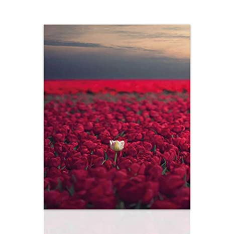 Declea Quadro con fiori Rose Rosse pronto da appendere - Quadro ...