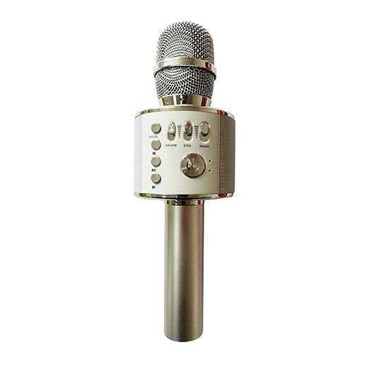 Mr. Fragile Altavoz de micrófono inalámbrico/Karaoke, Adecuado ...
