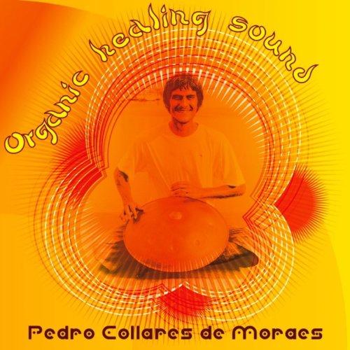 Amazon.com: Organic Healing Sound: Pedro Collares: MP3