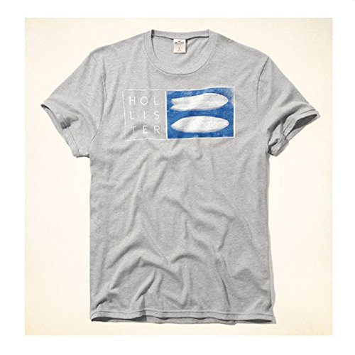 Price comparison product image Hollister HCO Logo Men's Graphic T shirt Tee (S,  Gray 10 Tee)