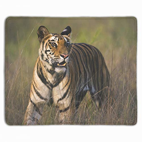 - Bengal Tiger Bandhavgarh National Park Mouse Pad/Mat Stitched Edges Non-Slip Rubber Mousepad