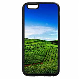 iPhone 6S / iPhone 6 Case (Black) tea garden