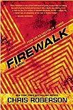 Firewalk: A Recondito Novel