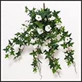 Windowbox 26in. Morning Glory Vine, Outdoor Rated - White