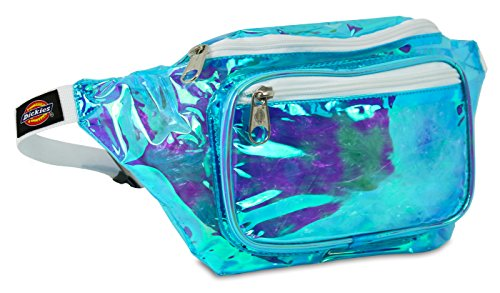 Dickies Hip Sack Hiking Waist Pack, Clear Iridescent, One Size (Dickies Mini)