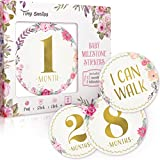 Baby Monthly Milestone Stickers - 16 Premium Floral Metallic Gold Stickers for First Year - 0 to 12 Month Onesie Belly Stickers - Best Baby Shower Gift Or Scrapbook Photo Keepsake