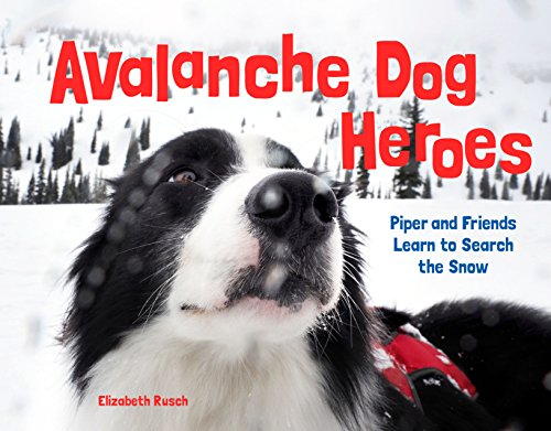 Avalanche Dog Heroes Piper and Friends Learn to Search the Snow [Rusch, Elizabeth] (Tapa Dura)