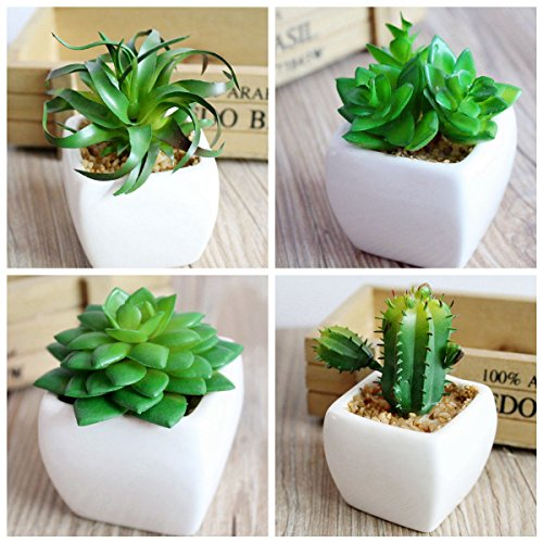 4Pcs Artificial Succulent Pots With White Cube Shaped Ceramic Planter Pots Plants Flowers Disk Micro-landscape For Simulation Cactus Cacti DIY Home (White Ceramic Disk)