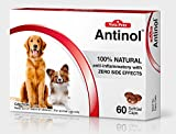 NEW Vetz Petz Antinol 100% Natural Anti-inframmatory with zero side effects 60 Caps for Dogs