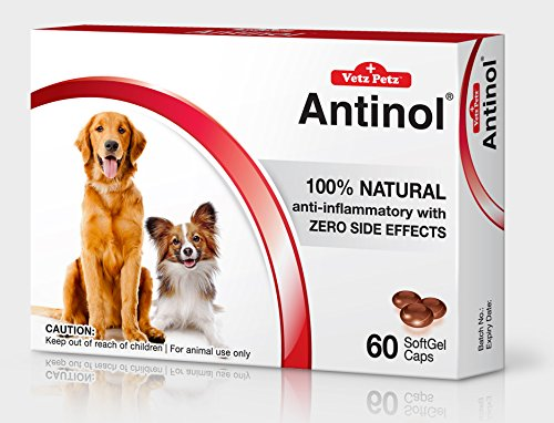 NEW Vetz Petz Antinol 100% Natural Anti-inframmatory with zero side effects 60 Caps for Dogs by VetzPetz