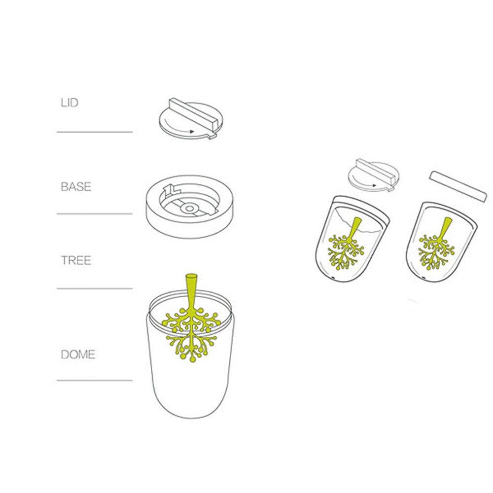 kuaetily Spezie Bicchieri creativo 4/Set piante con stagione Spezie Contenitori Set