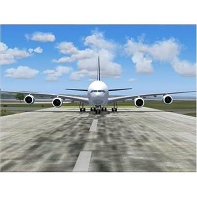 Amazon com: Boeing 787: FSX Add-On (PC) (UK): Video Games