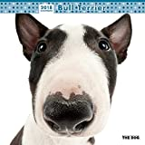 THE DOG Wall Calendar 2018 Bull Terrier
