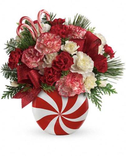 telefloras-peppermint-christmas-vase