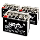 Triumph 955CC Daytona 955i, Speed Triple, 1999-2004 Battery 12V 12Ah SLA Maintenance Free AGM-GEL Motorcycle Extreme High Performance Battery Replacement Genuine KEYKO ® -3 Pack