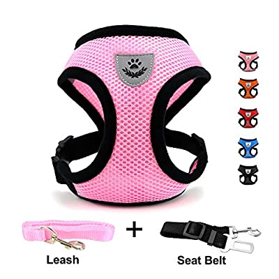 DogJog Mesh Harness with Padded Vest for Puppy and Cats,No Pull & No Choke Design, Gift with One Leash& Seat Belt