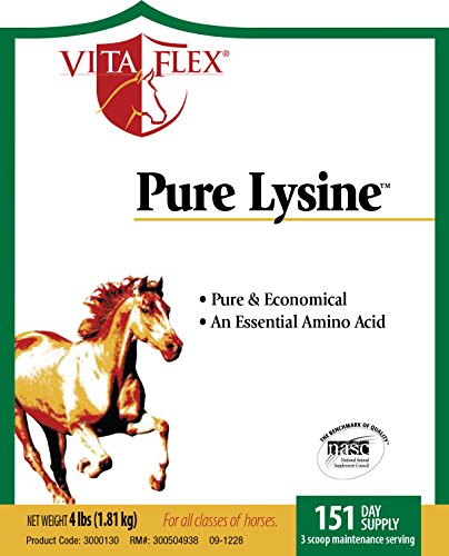 Image of Vita Flex Pure Lysine, 151 Day Supply, 4 lbs