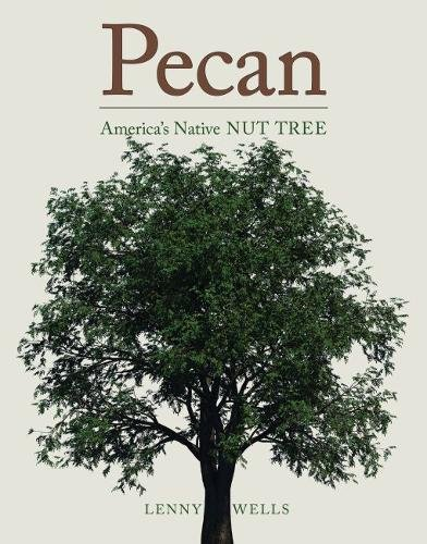 pecan-americas-native-nut-tree