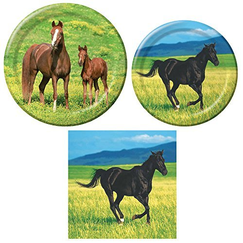 Wild Horses Tableware Pack for 16 Dinner Plates Lunch Plates and Napkins  sc 1 st  Amazon.com & Horse Dinnerware: Amazon.com