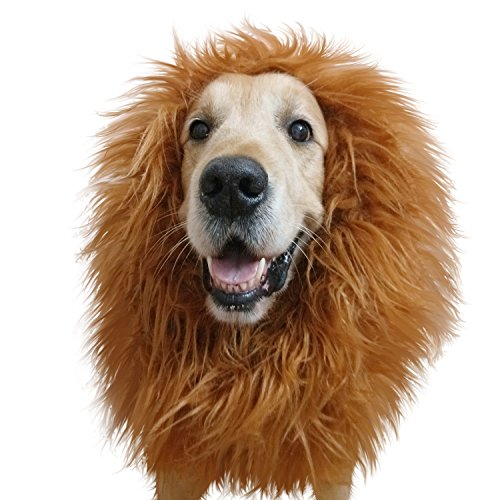 Lion Mane Costume,Lion Mane for Dog and Big Dog Lion Mane Wigs Fancy Dress Clothes Dog Apparel for Halloween Party-Large Dog Costumes by IN (Used Fancy Dress)