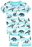 CoralBee Boys'2 Piece Sleepwear Short Pajamas Set Dinosaurs PJs Size 2Y