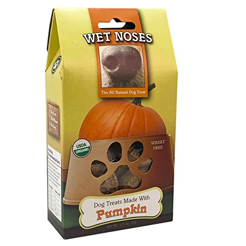 l Dog Treats- Pumpkin Case Pack 20 (Wet Noses Pumpkin)