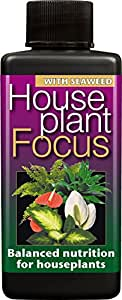 Growth Technology Houseplant Focus–Fertilizante líquido concentrado y equilibrado para 100ml (Gum Ltd)