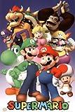 Nintendo (Super Mario Cast) Video Game Poster Print
