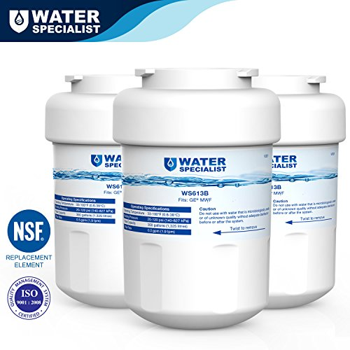 Waterspecialist MWF Refrigerator Water Filter Replacement for GE MWF SmartWater, MWFA, MWFP, GWF, GWFA, Kenmore 9991, 46-9991, 469991, 3 Pack