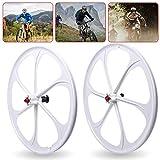 TFCFL 26-Inch MTB Bike Mag Wheels, 6-Spoke Set Rim