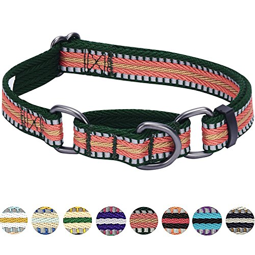 Blueberry Pet 8 Colors 3M Reflective Multi-colored Stripe Safety Training Martingale Dog Collar, Dark Green and Pink, Medium, Heavy Duty Adjustable Collars for ()