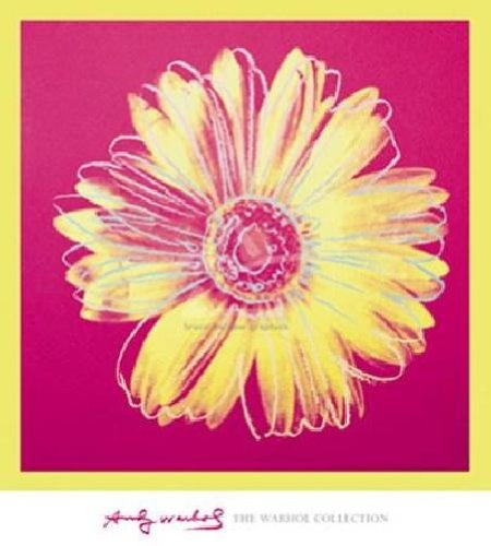 Andy Warhol - Daisy Fuchsia and Yellow LAST ONES IN INVENTORY!! (Warhol Daisy)