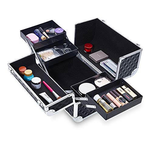 Kanaite Aluminum Makeup Train Case,12.5'' Professional Travel Cosmetic Case with 4 Trays and 2 Locks FL-132 (Black)