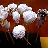 20 Balsa Wood Sola Diffuser Flowers with 5in. Rattan Reeds, mix of Jasmine, Lotus, Rose, Mini Rose, Opium Poppy
