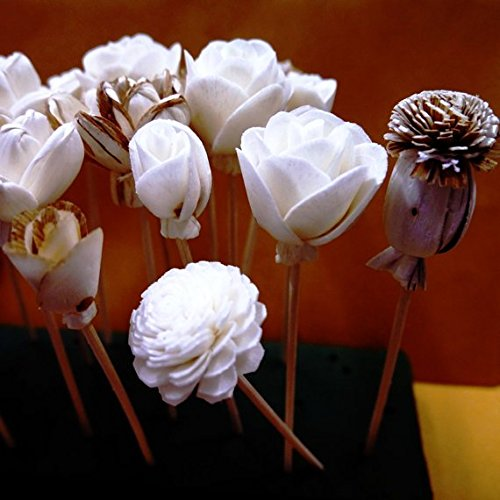 20 Balsa Wood Sola Diffuser Flowers with 5in. Rattan Reeds, mix of Jasmine, Lotus, Rose, Mini Rose, Opium Poppy by Zap (Image #1)