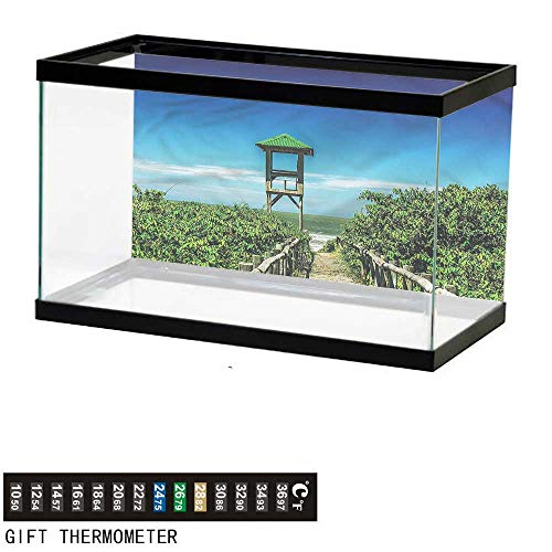 ackdrop Beach,Tropical Seacoast Greenery,Aquarium Background,48