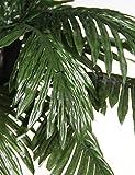 LIGHTSHARE JT-DC240V0250-C 7FEET Lighted Palm