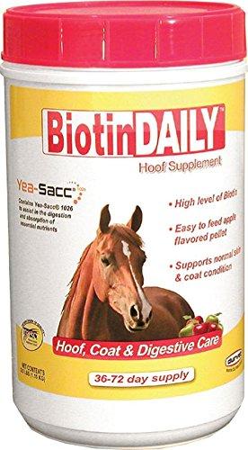 Optimum Flavored Vitamins (Durvet Biotin Daily Horse Hoof Care, 2.5 lb)