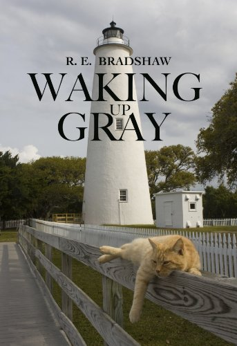 Waking Up Gray by [Bradshaw, R. E.]