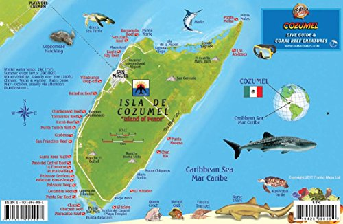 Cozumel Dive Map & Reef Creatures Guide Franko Maps Laminated Fish Card (Cozumel Map Dive)