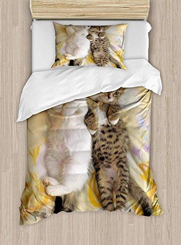 MIGAGA Funny Duvet Cover Set,Kitten Siblings Lying Beside Sleepy Heads Cat Pet Animal Lovers Best Friends Image, Decorative 3 Piece Bedding Set with 2 Pillow Shams