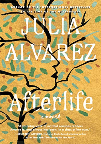 Book Cover: Afterlife