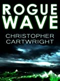 Rogue Wave (Sam Reilly Book 4)