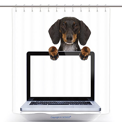 Decorative Shower Curtains Dachshund Or Sausage Dog Behind A Laptop Pc Computer Screen Isolated On White Background 601154711 Polyester Bathroom Shower Curtain Set With Hooks