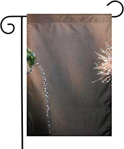 Pooizsdzzz Rainy Grasshopper and Dandelion Festival Garden Flag Front Door Flag Decorative Home Outdoor Flag 1218 Inch